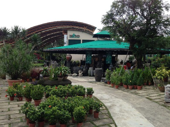 Island Landscape Nursery