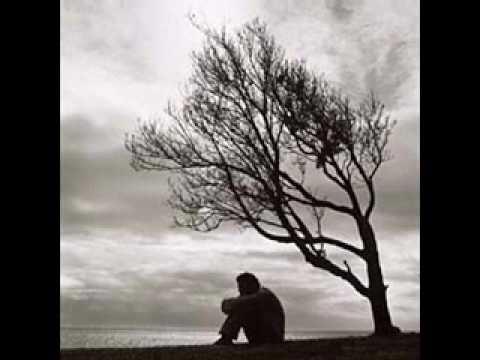 The Age Of Self Lyrics by Robert Wyatt